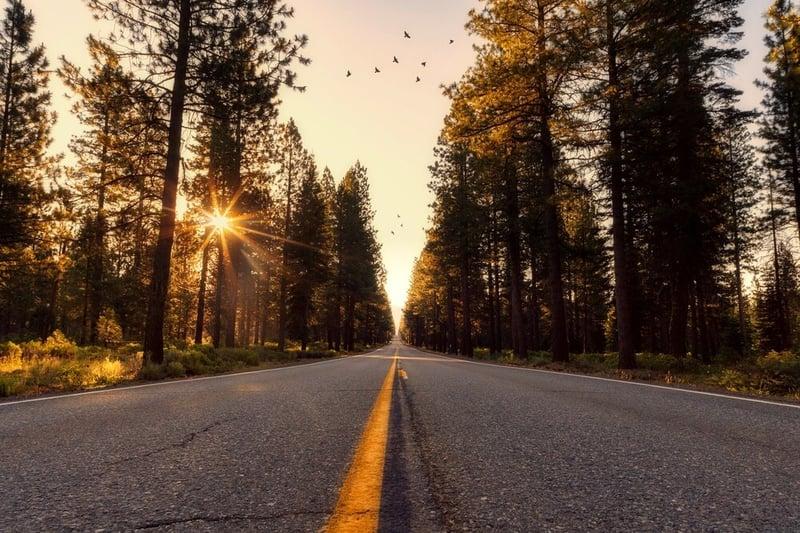 04+Road+at+Dawn